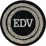 Beauftragter EDV